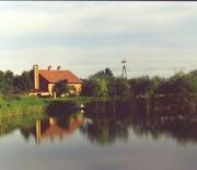 dom - widok zza stawu